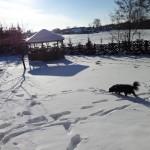 Ferie zimowe,Pusia